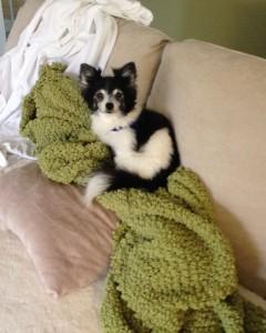 Jill - fav blanket
