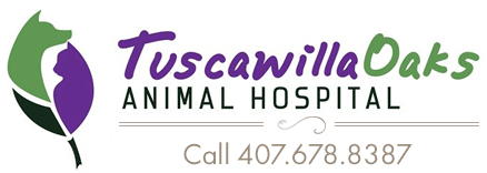 Veterinarians in Oviedo, Florida | Tuscawilla Oaks Animal Hospital